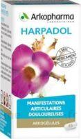 ARKOGELULES HARPAGOPHYTON, 150 gélules à BISCARROSSE