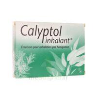 CALYPTOL INHALANT, émulsion pour inhalation par fumigation à BISCARROSSE