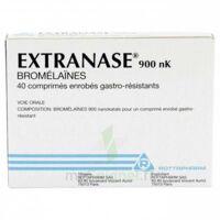 EXTRANASE 900 nK, comprimé enrobé gastro-résistant à BISCARROSSE