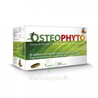 osteophytum 30 gelules à BISCARROSSE
