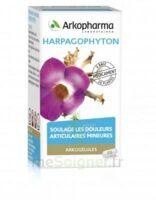 ARKOGELULES HARPAGOPHYTON, 45 gélules à BISCARROSSE