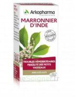ARKOGELULES MARRONNIER D'INDE, gélule à BISCARROSSE