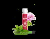 PURESSENTIEL ANTI-PIQUE Roller 11 huiles essentielles à BISCARROSSE