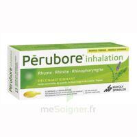 PERUBORE Caps inhalation par vapeur inhalation Plq/15 à BISCARROSSE