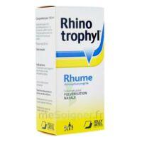 RHINOTROPHYL Solution pour pulvérisation nasale 1Fl/12ml à BISCARROSSE